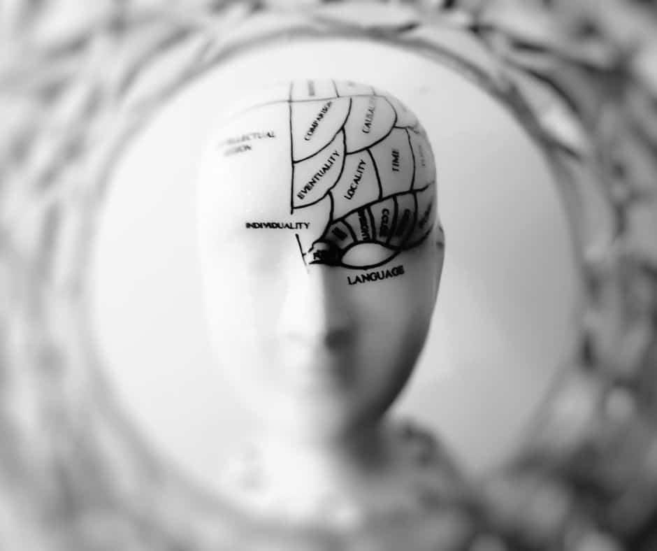 IIT brain